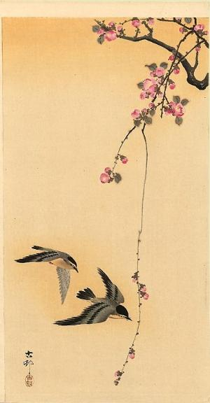 Ohara Koson swallows and cherry blossoms